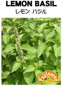 【藤田種子】レモンバジル ハーブ種