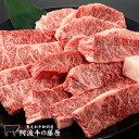 【数量限定】「阿波牛の藤原」黒毛和牛 特上ハラミ 厚切り焼肉用 900g