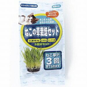 アラタ ねこの草 栽培セット 3回分【代引不可】