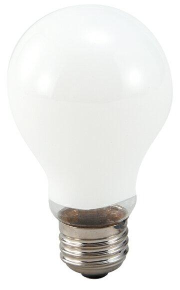 ライティングベース 大 用電球(20W)