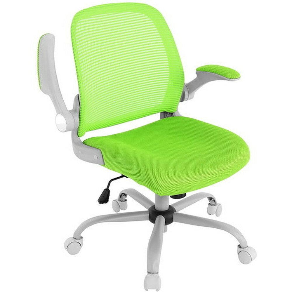 【送料無料】Bauhutte (バウヒュッテ) 事務椅子の決定版 デスクチェア The・ジム(ザジム) 日本人向け低座面設計 グリーン CP-22-GN【代引不可】