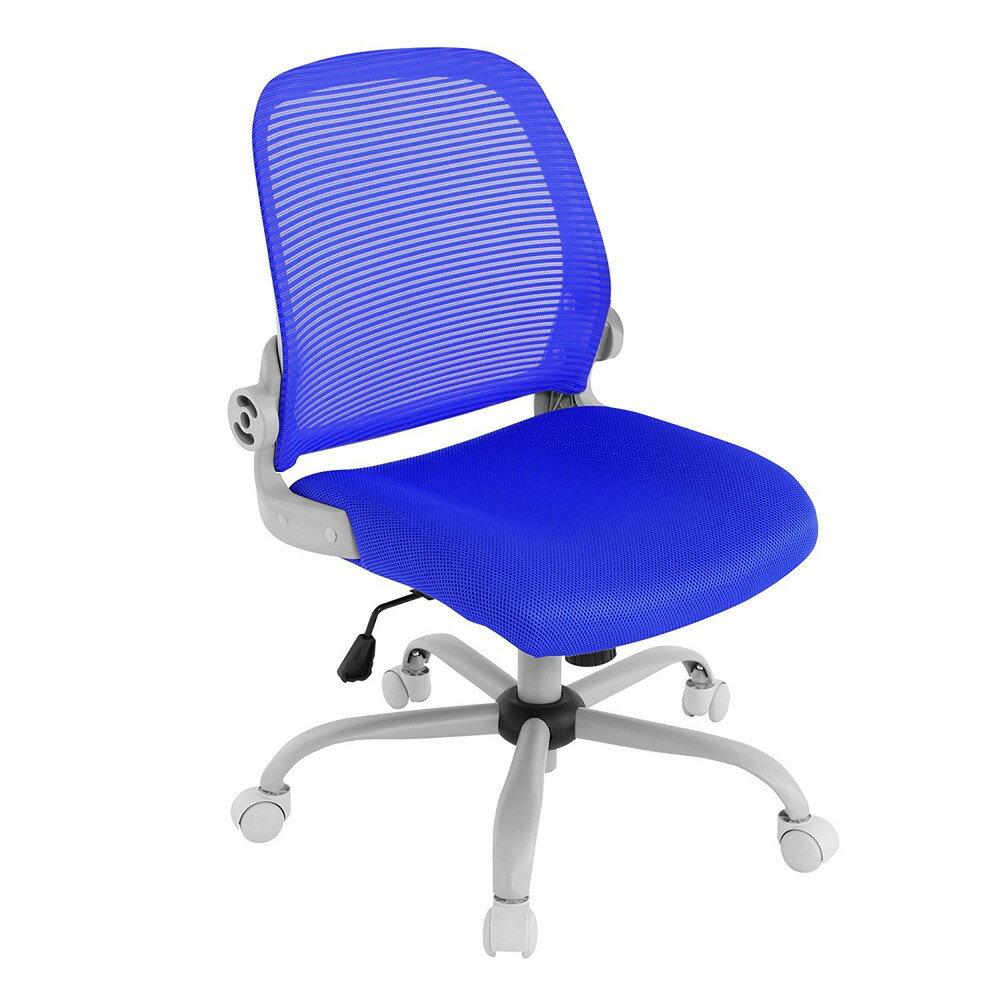 【送料無料】Bauhutte (バウヒュッテ) 事務椅子の決定版 デスクチェア The・ジム(ザジム) 日本人向け低座面設計 肘掛なしタイプ ブルー CP-23-BU【代引不可】