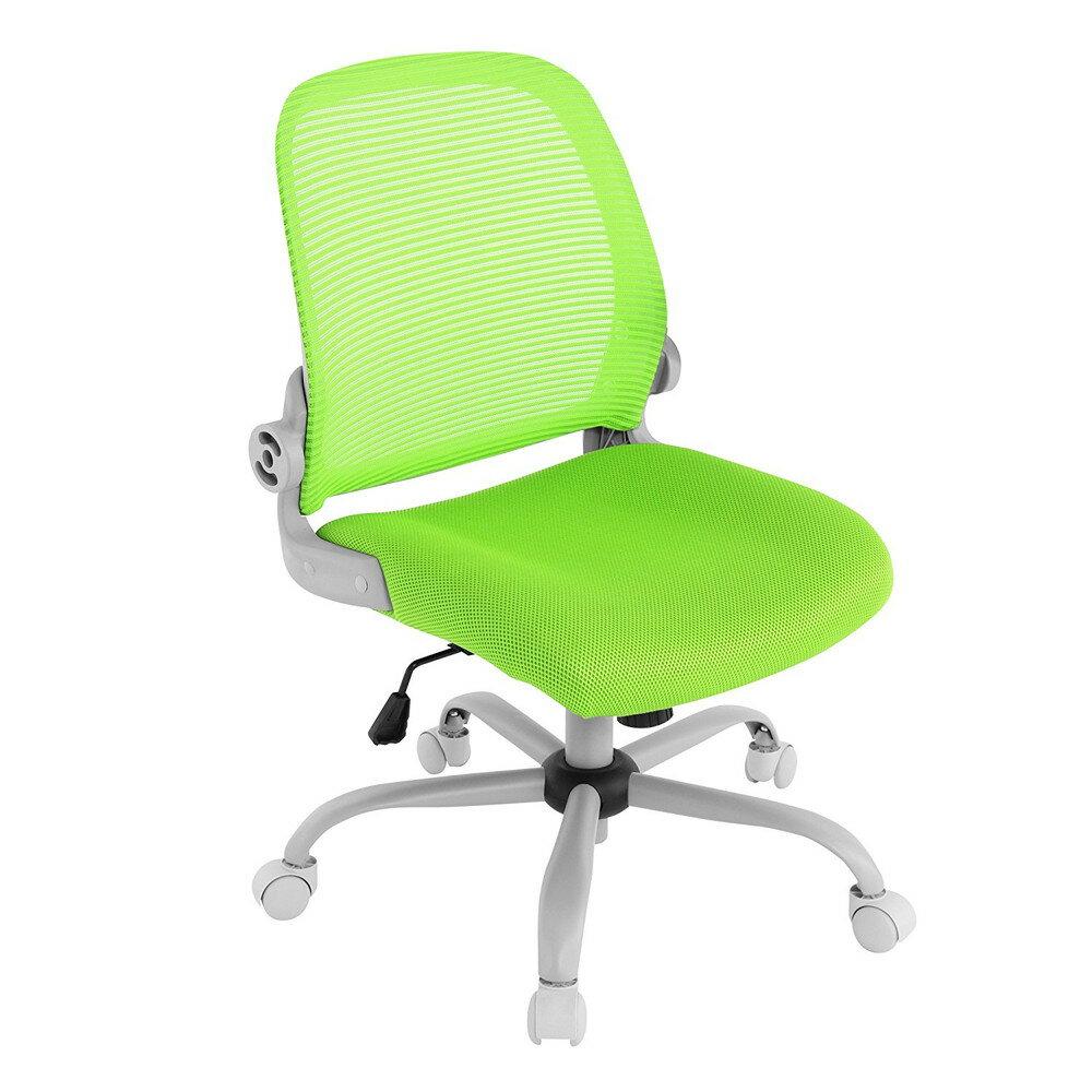 【送料無料】Bauhutte (バウヒュッテ) 事務椅子の決定版 デスクチェア The・ジム(ザジム) 日本人向け低座面設計 肘掛なしタイプ グリーン CP-23-GN【代引不可】