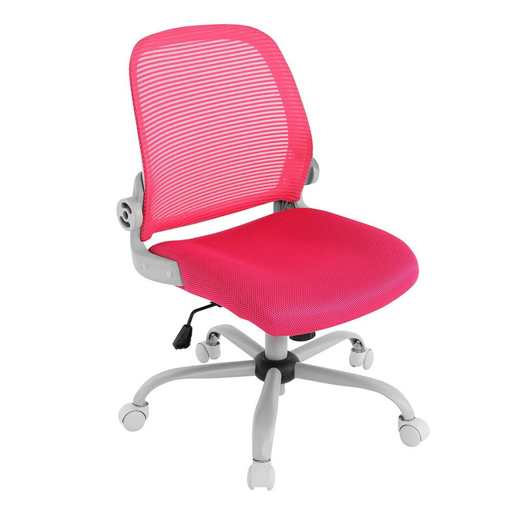 【送料無料】Bauhutte (バウヒュッテ) 事務椅子の決定版 デスクチェア The・ジム(ザジム) 日本人向け低座面設計 肘掛なしタイプ ピンク CP-23-PK 【代引不可】