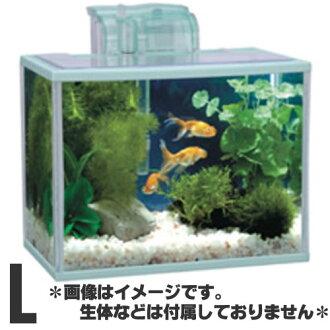 KOTOBUKI Aqua步L PF安排[C]6分安排