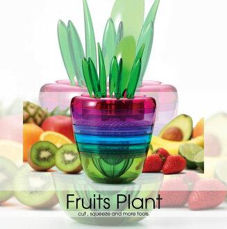 曙植物水果 (水果植物) CH-2009。