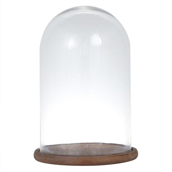 【送料無料】ダルトン グラスドーム GLASS DOME M SG1957WS【代引不可】