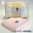 ダンフィル・フィベール掛ふとんとインビスタ・マイクロマティーク毛布との2点セット シングル 新生活 寝具セット  あたたかい 洗え…