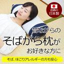 昔ながらのそばがら枕風のパイプ枕