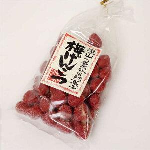 飛騨高山 お土産 梅げんこつ 220g 駄菓子 梅肉
