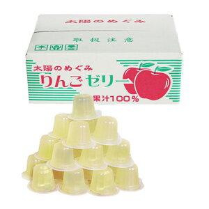 【計69個入/1個35円】ASフーズ 果汁100%ゼリーBOX りんご味 23粒×3箱 送料無料