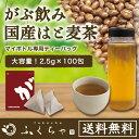 【はと麦茶|ハトムギ茶】国産はと麦茶100%|ふくちゃのがぶ飲みはとむぎ茶ティーバッグ2.5g×100包|ハト麦健康茶(美容…