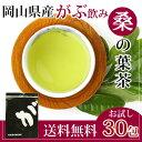 岡山県産桑の葉茶ティーバッグ3g×30包が送料無料!ダイエットサポートにはふくちゃのがぶ飲み国産のくわの葉茶(マルベリーリーフ)をどうぞ。クワの葉茶はノンカフェ...
