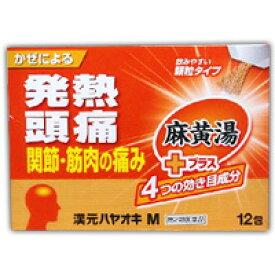 【第2類医薬品】 漢元ハヤオキ M 麻黄湯プラス 12包 4987533061561