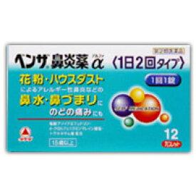 【第(2)類医薬品】 ベンザ鼻炎薬α 1日2回タイプ 12錠 4987123145275