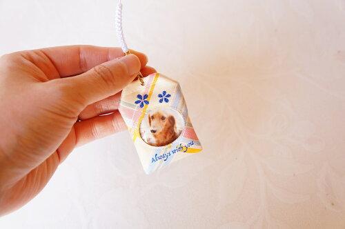 【メール便対応】虹まもりペット遺毛を納めるお守り形見ペットロス写真手元供養ペット供養
