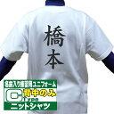 MIZUNO ミズノ 野球ユニフォーム 昇華プリント 名前入り練習用ユニフォームシャツ (ニット) Cタイプ 背中のみ 12JC9F6…