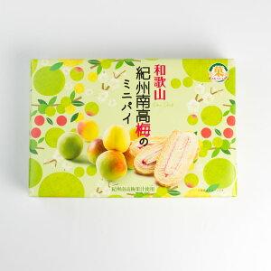 ☆レターパックプラス対応☆ 紀州南高梅のミニパイ 10枚入