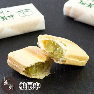 レターパックプラス対応 紀州 柚最中 10個入 自家製餡 最中 もなか 白浜 銘菓