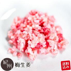ポスト投函送料込み 梅生姜 240g(120g×2袋) 梅味 しょうが 生姜 ご飯のお供 SP
