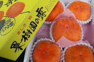 愛秋豊(次郎柿系の新品種) 大玉5個入り10月中旬より収穫予定