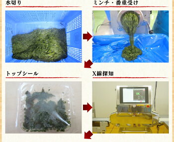 国産愛媛県で獲れた天然アカモク自社で漁業から加工を行っております!/ギバサ<業務用>たっぷり500g×2【あかもく】【アカモク】【ぎばさ】