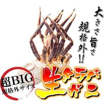 【送料無料】超特大たらばがに3kg!!2〜3肩【【カニ】【蟹】【たらば】【タラバ】【ジャンボ】【超特大】