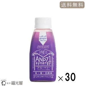 【公式】ANP71 シナジー ブルーベリー【冷蔵】30本入 ケース 植物性乳酸菌 アントシアニン 送料無料