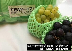 フルーツキャップ TSW-17 グリーン 緑 【ダブル】17cm 【100個入】(領収書対応可能) 果物 緩衝材 保護材 発泡 ネット マスカット シャインマスカット ぶどう 梨 すいか 西瓜 キャップ フルーツ