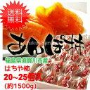 【クーポン利用で20%オフ】【送料無料】 はちや柿のあんぽ柿 (約1,500g)