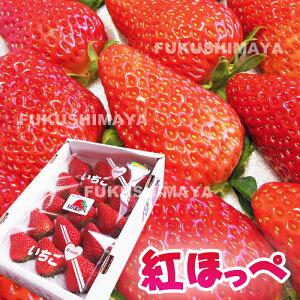 紅ほっぺ いちご 福島 大粒 真っ赤 甘い ジューシー 新鮮 手土産 ギフト プレゼント 人気