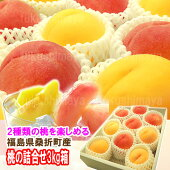 黄金桃と赤い桃の詰合せ3kg箱(7〜12玉入)』