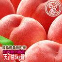 【クーポン利用で20%オフ】【数量限定】本物の幻の桃。1%未満の奇跡の極上桃『天』5kg箱(13〜18玉入)。普通じゃまず入手困難な桃です。