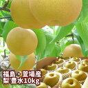 豊水梨 10kg箱 20〜36玉入 梨の名産地 ふくしま かやば梨 福島の大地が育んだ 果汁たっぷり の甘〜い梨【発送時期9月…