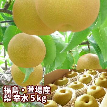 梨の名産地 ふくしま かやば梨 幸水 5kg箱 12〜18玉入 福島の大地が育んだ果汁たっぷりの甘〜い梨 【発送時期:8月後半頃〜8月下旬頃まで予定】