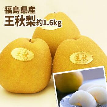 【あす楽対応】ジャンボな王秋梨 福島県かやばの梨(約1.6kg箱 3〜4玉入)