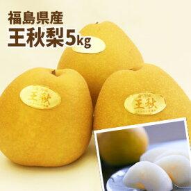 ジャンボな王秋梨 福島県かやばの梨(約5kg箱 7〜12玉入)