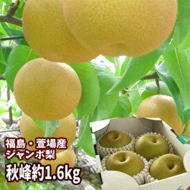 ジャンボな秋峰梨 福島県かやばの梨(約1.6kg箱 3〜4玉入)