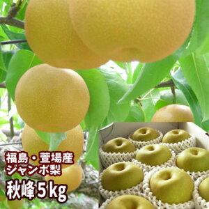 ジャンボな秋峰梨 福島県かやばの梨(5kg箱 5〜12玉入)