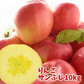 福島県産『サンふじ』、10kg箱(24〜36玉入)。大人向けのたっぷり贈答向けサイズ。発送は11月25日〜1月中旬まで12月までは蜜入りの期待大♪お歳暮にも大人気の甘いりんごです。年越し特集2008