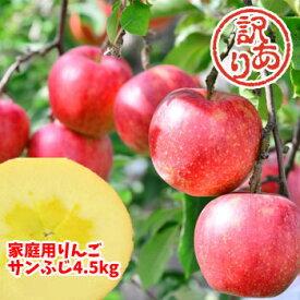 【クーポン利用で20%OFF】福島県産 サンふじ りんご 4.5kg箱 (12〜25玉入) 訳あり ご家庭用 リンゴ 大きさ 不揃い 傷