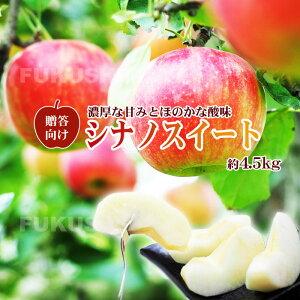 【贈答向】りんご(シナノスイート)4.5kg箱♪10玉〜18玉 【発送時期:10月中旬以降から順次発送予定】