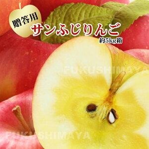 福島県産 サンふじ 約5kg箱 10〜18玉入 4〜5人向けの贈答向けサイズ【発送時期:12月上旬頃〜1月中旬頃まで予定】りんご リンゴ