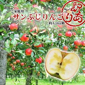 【11/20 10:00〜枚数限定クーポン利用で20%オフ】福島県産 サンふじ りんご 約4.5kg箱 12〜25玉入 2020年予約 訳あり ご家庭用 リンゴ 大きさ 不揃い 傷 訳ありリンゴ 蜜入 お得 お歳暮 傷あり キズあり おいしい