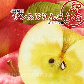 福島県産 サンふじ りんご 約4.5kg箱 12〜25玉入 訳あり ご家庭用 リンゴ 大きさ 不揃い 傷 訳ありリンゴ 蜜 お得 傷あり キズあり おいしい 食品ロス【11月下旬以降から発送予定】