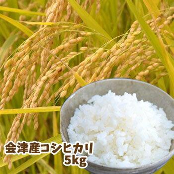 【平成29年産】【新米】会津産コシヒカリ(5kg)