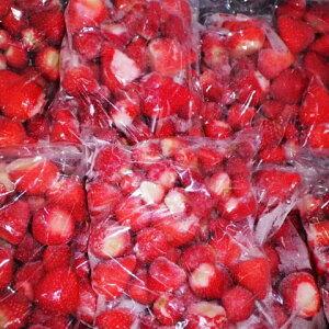 業務用まとめ買い//冷凍イチゴ・今シーズンも出品します●化学農薬不使用栽培の安心安全純国産●イチゴ農家の冷凍いちご10kg/おいCベリー・紅ほっぺ・ゆめのか混合。1袋500g