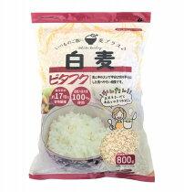 ビタフク(白麦)内容量800gいつものお米に混ぜて炊くだけで手軽に食物繊維たっぷり麦ごはん♪