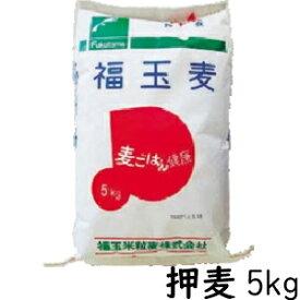 【業務用】福玉麦(押麦) 国産大麦 5kg