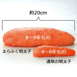 数量限定送料無料「特大!切れ子太らふく明太子1kg」無着色レギュラー
